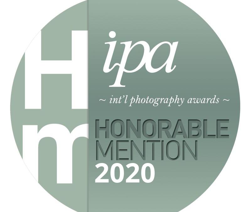 Taste of Tucson Cookbook Wins IPA International Food Photography Award